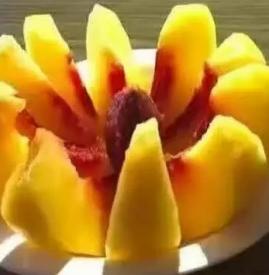 黄桃哪里产的好吃